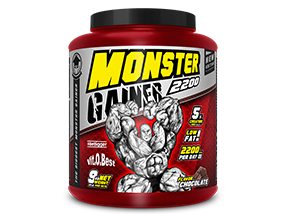 Monster Gainer 2200 9kg(巧克力)(Vitobest)(虚拟)Monster Gainer 2200 9kg (Chocolate) (维托贝斯特.VITOBEST)